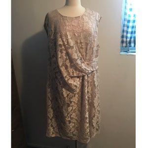 NWT Dressbarn Cream Lace Wrap Dress